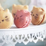 macarons chats lenotre